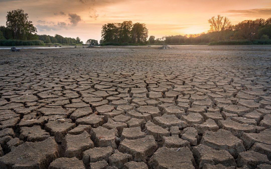 El agua: fuente de vida y de conflictos